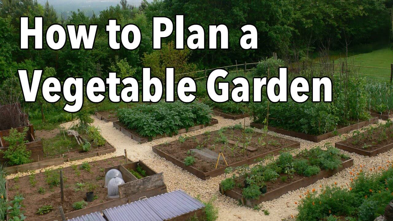 Interesting Vegetable Garden Ideas South Africa With Decorating